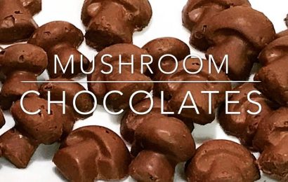 Factors To Consider While Buying Magic Mushrooms Chocolate
